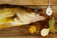 Fish a river pike perch on a wooden board with salt, bay leaf, onions, pepper. Royalty Free Stock Image