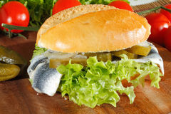 Fish rolls with sour herring, pickled herring Stock Photography