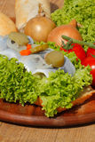 Fish rolls with sour herring, pickled herring Royalty Free Stock Photo