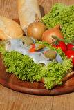 Fish rolls with sour herring, pickled herring Royalty Free Stock Images