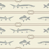 Fish and a rope pattern Royalty Free Stock Photo