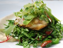 Fish with salad stock photos