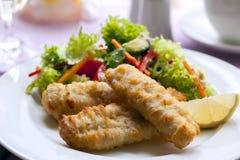 Fish and Salad Stock Photos