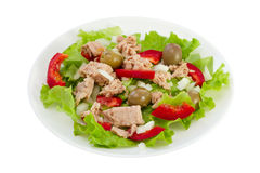 Fish salad on the plate Stock Image
