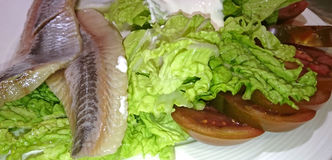 Fish and salad Royalty Free Stock Images
