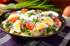 Fish salad with potatoes, eggs, red onion, tomatoes and dressing Stock Photo