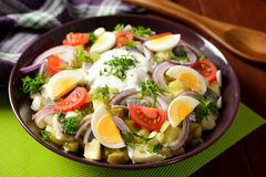 Fish salad with potatoes, eggs, red onion, tomatoes and dressing Royalty Free Stock Photos