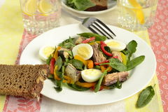 Fish salad with quail eggs, sweet peppers and fresh herbs Royalty Free Stock Image