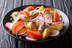 Fish salad: smoked mackerel with potatoes, radish, onions and to stock image