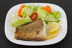 Fish with salad Stock Images
