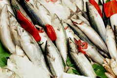 Fish for sale. A lot of fish selected for sale Royalty Free Stock Photography