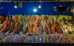 Fish market in Manila, Philippines. Fish for sale at market of Seaside Dampa Macapagal in Manila, Philippines Royalty Free Stock Photos