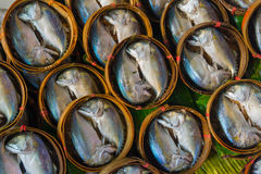 Fish for sale Stock Images
