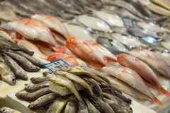 Fish for sale at the Noryangjin Fish Market in Seoul Stock Photography