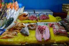 Fish market in Manila, Philippines. Fish for sale at seafood market in Manila, Philippines royalty free stock image