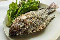 Fish with salt. Of grill Royalty Free Stock Images