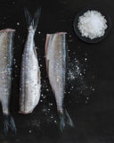 Fish and Salt. Fish and Sea Salt on Dark Background Stock Image