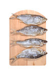 The fish a salty vobla  on a  board. The fish a salty vobla lays on a wooden board Royalty Free Stock Photography