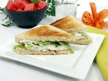 Fish sandwich. Exclusive fish fillet sandwich on square platter with decoration Royalty Free Stock Image