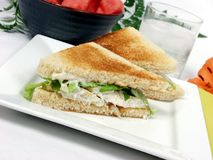 Fish sandwich Stock Photos
