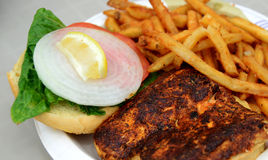 Fish sandwich. Blackened fish sandwich with lettuce, tomato and onion royalty free stock image