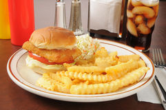 Fish sandwich with fries. A fish sandwich with french fries and a cola Stock Photos