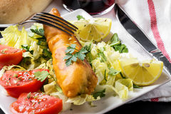 Fish sandwich with greenery, tomatoes and salad Stock Photos