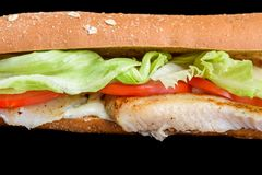 Fish Sandwich with tomato and iceberg lettuce bread from bran, isolated on black background stock photo