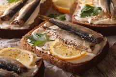 Fish sandwiches with sprats, cream cheese and lemon macro. horiz Stock Images