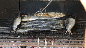 Fish Sardines Grilling on Grid stock footage