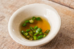 Fish sauce and chili on a cup Royalty Free Stock Photography