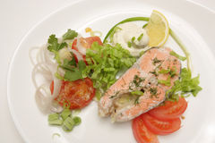 Fish with sauce and salad Stock Photography