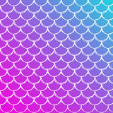 Fish scale and mermaid background Stock Images