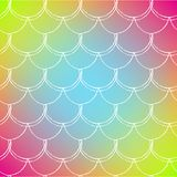 Fish scale and mermaid background. Squama on trendy gradient background. Square backdrop with squama ornament. Bright color transitions. Mermaid tail banner and Stock Images