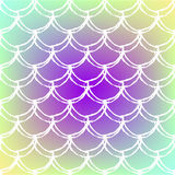 Fish scale and mermaid background Royalty Free Stock Photography