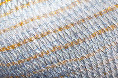 Fish scales. Macro shot of Fish scales. natural texture, lateral line is seen Royalty Free Stock Photos