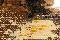 Fish scales golden shiny shimmers in different colors. Glamorous. For all royalty free stock image