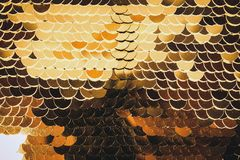 Fish scales golden shiny shimmers in different colors. Glamorous. For all stock photos