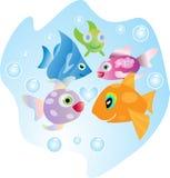 Fish in the sea stock photo
