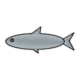 Fish sea animal. Vector illustration graphic design Stock Photography