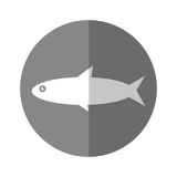 Fish sea animal. Vector illustration graphic design Stock Images