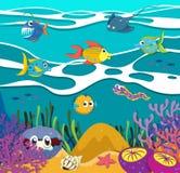 Fish and sea animals underwater Stock Photo