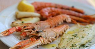 Fish with sea bream prawns and shrimps at the restaurant Stock Image