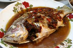 Fish and Seafood. A whole fish stir-fried Chinese style with chillies and garlic in soy sauce Royalty Free Stock Photos