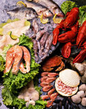 fish & seafood Stock Images