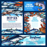Fish and seafood, fishing club banner template set. Fresh fish and seafood banner, sea fishing poster set. Salmon, crab, tuna, marlin, shrimp, lobster, mackerel Stock Image