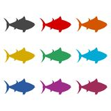 Fish or seafood icon, color icons set. Simple vector icon Stock Photography