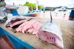 Fish at seafood market Royalty Free Stock Images