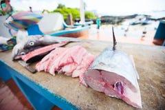 Fish at seafood market. Fresh fish at seafood market in Ecuador Royalty Free Stock Images