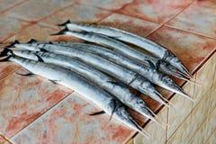 Fish, Seafood. Needlefish ( Houndfish, Tylosurus Crocodilus ) At Stock Photography
